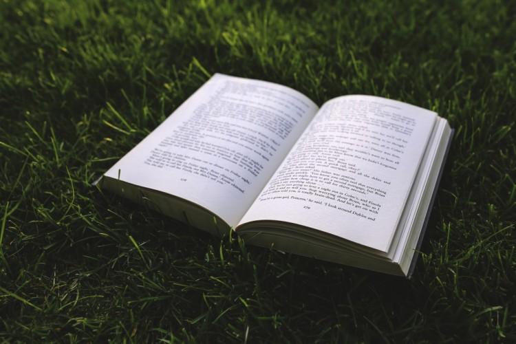 boek in het gras ventoux lezen milesandmore