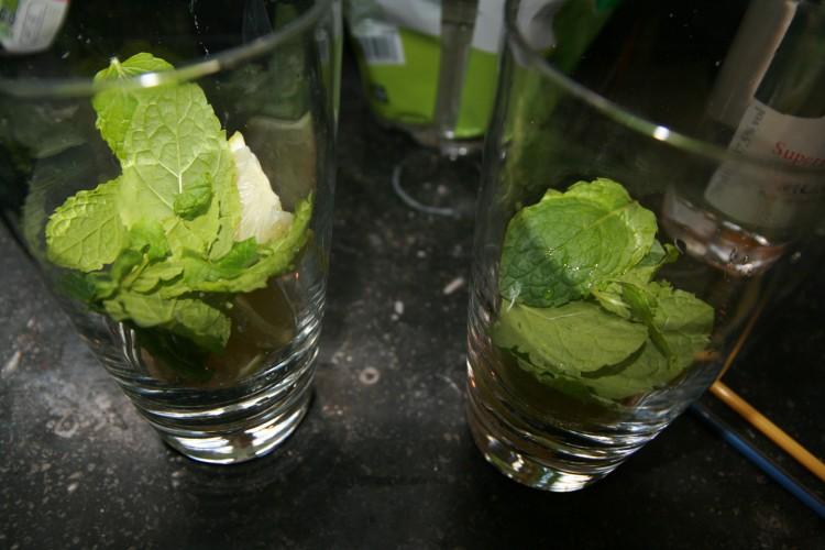 munt blaadjes in glas