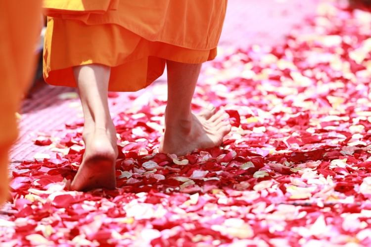 boeddhistische monnik mindful