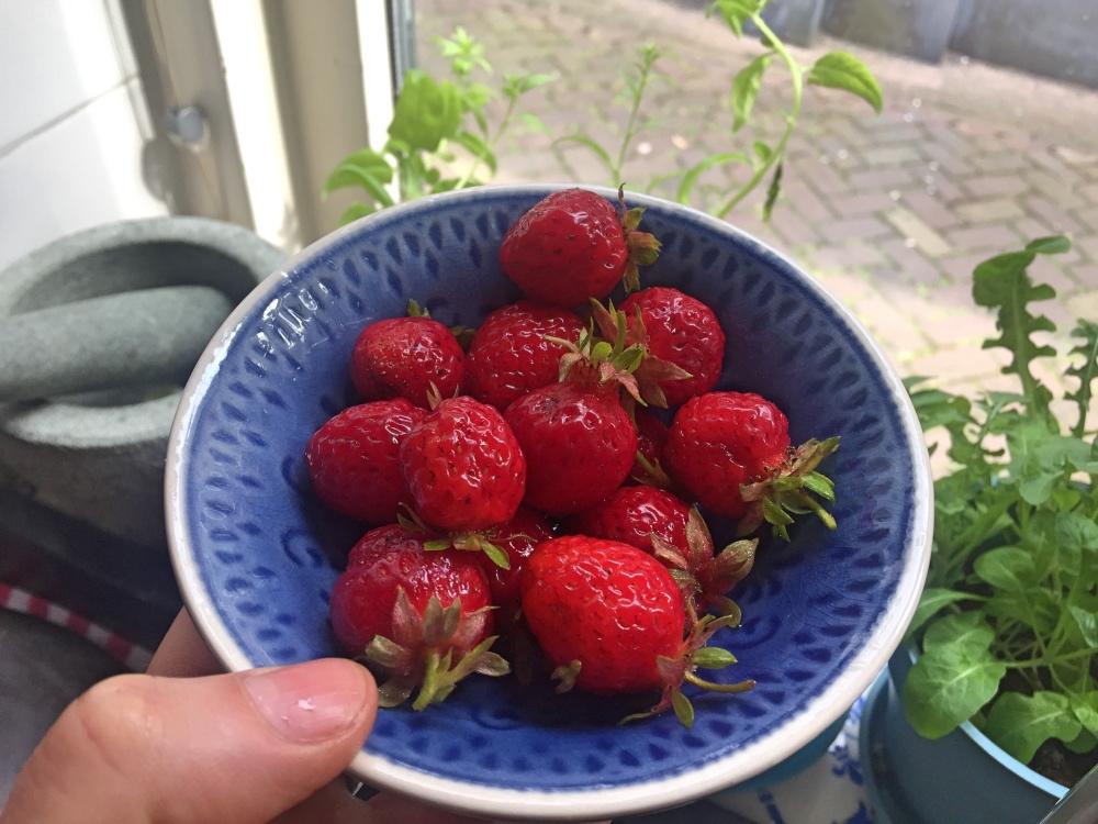 aardbeien uit de moestuin na een lesje crossfit