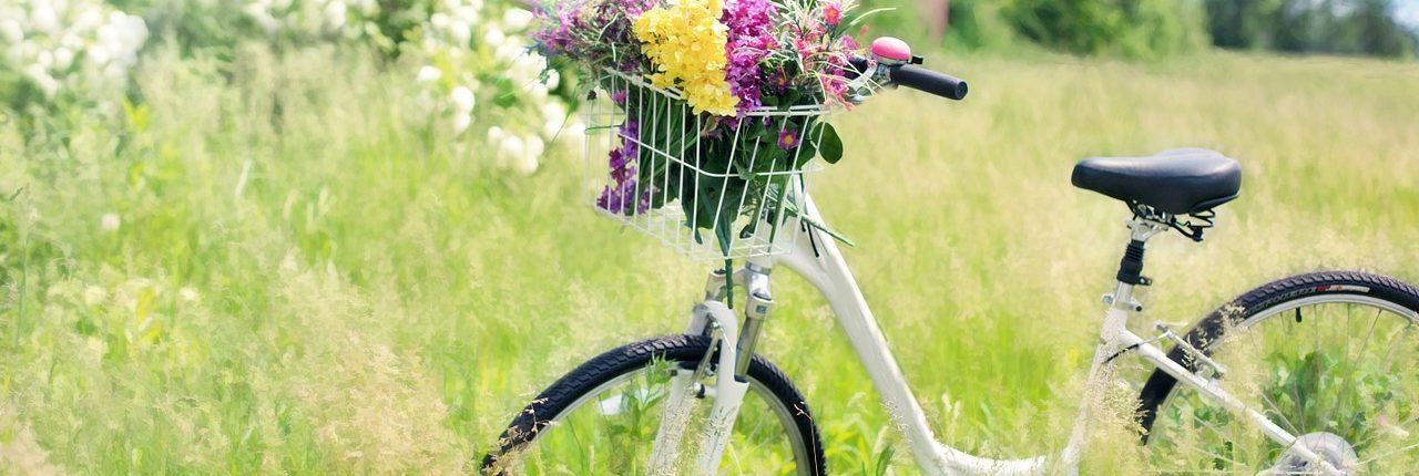 lang leve de fietser