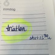 agenda 2015 Weesper 1/4 triatlon