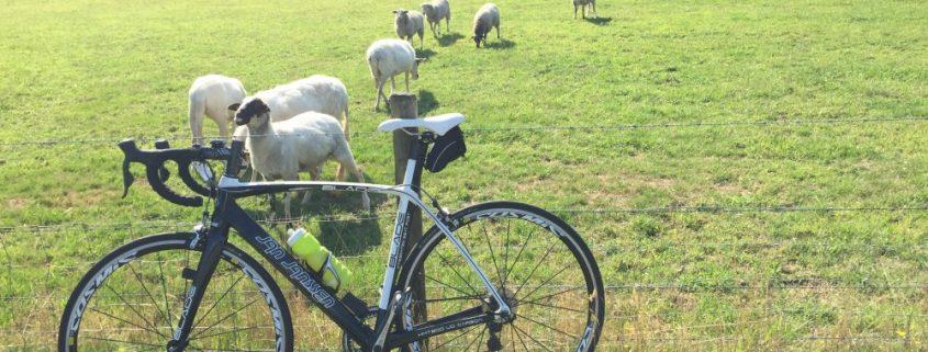 wielrenner bandenspanning wielrennen fiets bike milesandmore goede voornemens