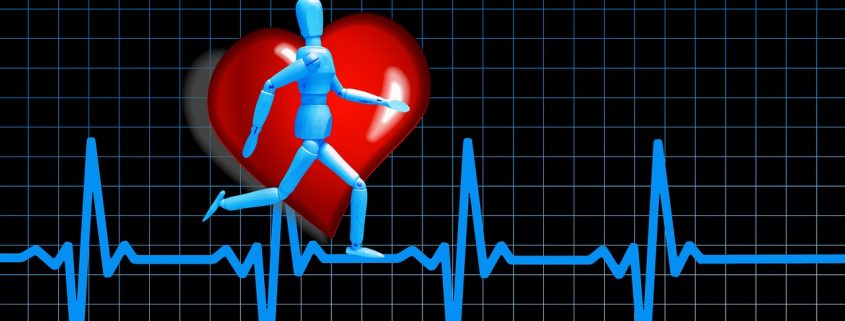 trainen in hartslagzones